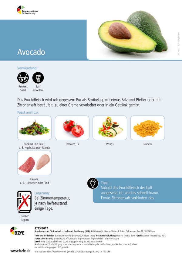 Infoblatt Avocado